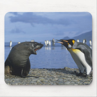 South Georgia Island, St. Andrews Bay, King Mouse Pad