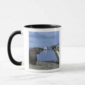 South Georgia Island, St. Andrews Bay, King Mug
