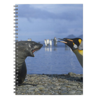 South Georgia Island, St. Andrews Bay, King Notebook
