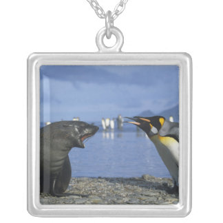 South Georgia Island, St. Andrews Bay, King Silver Plated Necklace