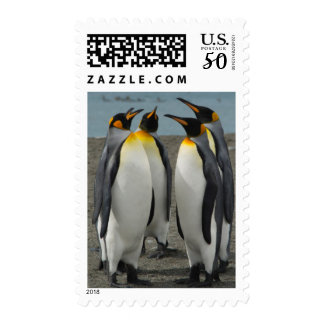 South Georgia. Saint Andrews. King penguins 8 Postage