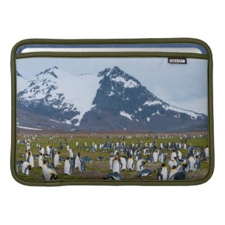 South Georgia. Salisbury Plain. King penguins 1 MacBook Sleeve