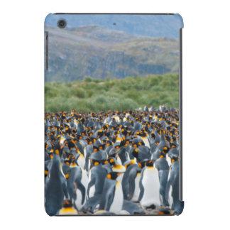 South Georgia. Salisbury Plain. King penguins 3 iPad Mini Case