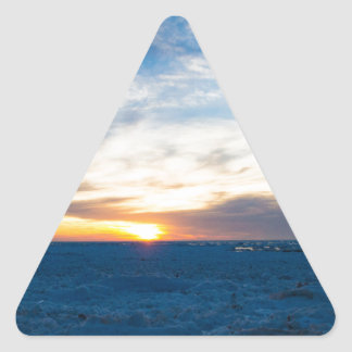 South Haven Lighthouse Frozen Lake Michigan Triangle Sticker