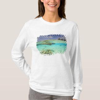 South Huvadhoo Atoll, Southern Maldives, Indian T-Shirt