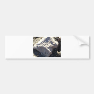 South Kiabab Grand Canyon National Park Fossils Bumper Sticker
