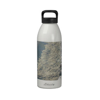 South Kiabab Grand Canyon National Park Fossils Reusable Water Bottles