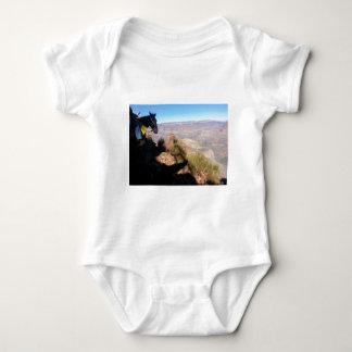 South Kiabab Grand Canyon National Park Mule Ride Infant Creeper