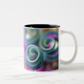 South Namaqualand, Curled lily leaves. Credit Two-Tone Coffee Mug