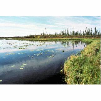 South of Hozatka Lake Photo Cut Outs
