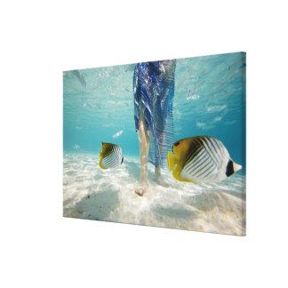 South Pacific, Bora Bora, female tourist walking 2 Canvas Print