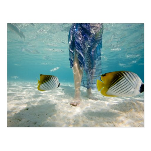 South Pacific, Bora Bora, female tourist walking 2 Postcards