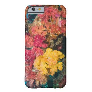 South Pacific, Fiji, filón del arco iris en Funda De iPhone 6 Barely There