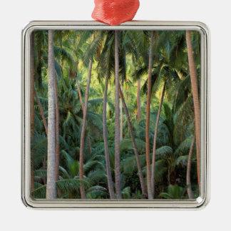 South Pacific, French Polynesia, Bora Bora. Metal Ornament