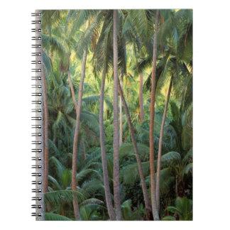 South Pacific, French Polynesia, Bora Bora. Note Book