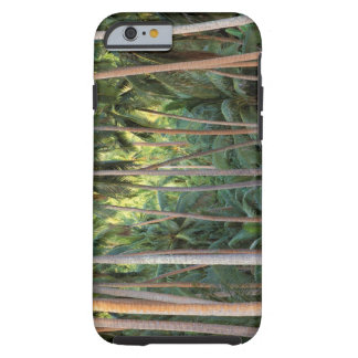 South Pacific, French Polynesia, Bora Bora. Tough iPhone 6 Case