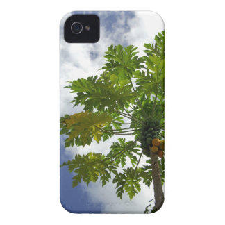 South Pacific French Polynesia Moorea 2 Blackberry Bold Cases