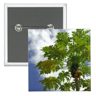 South Pacific, French Polynesia, Moorea. 2 Pinback Button