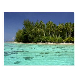 South Pacific, French Polynesia, Moorea 2 Postcard