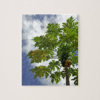 South Pacific, French Polynesia, Moorea. 2 Puzzle