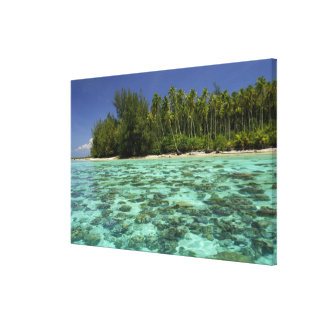 South Pacific, French Polynesia, Moorea 3 Canvas Print