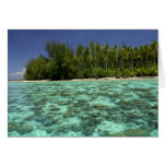 South Pacific, French Polynesia, Moorea 3 Greeting Card