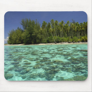 South Pacific, French Polynesia, Moorea 3 Mouse Pad