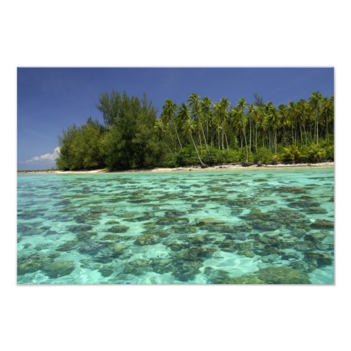 South Pacific, French Polynesia, Moorea 3 Photo Print
