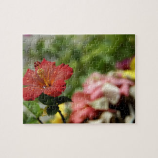 South Pacific, French Polynesia, Society 2 Jigsaw Puzzle