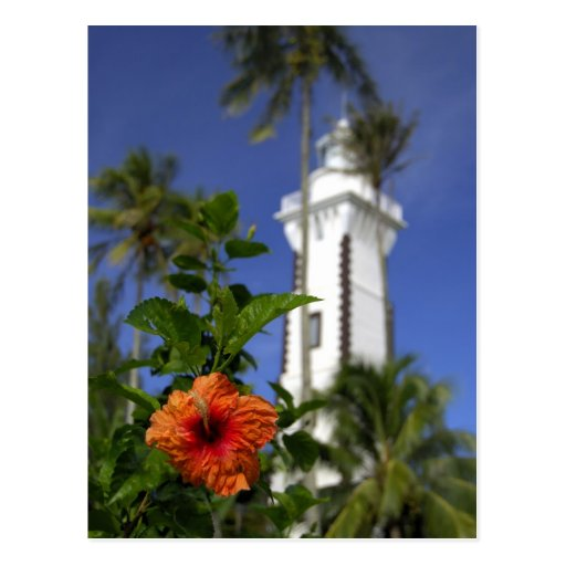 South Pacific, French Polynesia,Tahiti. Hibiscus Postcard