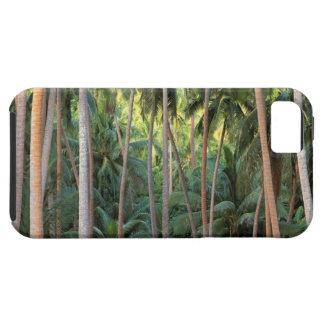 South Pacific, Polinesia francesa, Bora Bora. iPhone 5 Case-Mate Cobertura