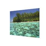 South Pacific, Polinesia francesa, Moorea 3 Impresión En Lienzo Estirada