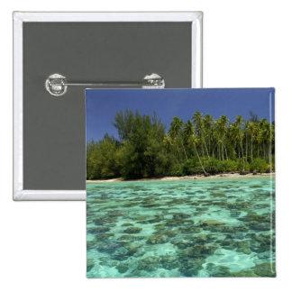 South Pacific, Polinesia francesa, Moorea 3 Pin Cuadrado