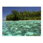 South Pacific, Polinesia francesa, Moorea 3 Tarjeta Postal
