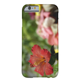 South Pacific, Polinesia francesa, sociedad 2 Funda De iPhone 6 Barely There
