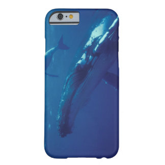 South Pacific, Tonga. humpback whale and calf Barely There iPhone 6 Case
