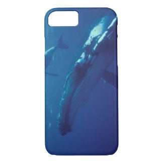 South Pacific, Tonga. humpback whale and calf iPhone 7 Case