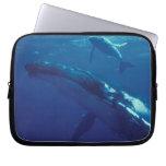South Pacific, Tonga. humpback whale and calf Computer Sleeve