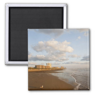 South Padre Island, Texas, USA resort hotels, 2 Inch Square Magnet