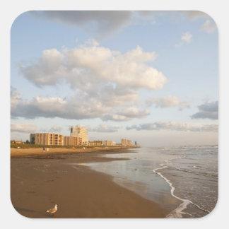 South Padre Island, Texas, USA resort hotels, Sticker