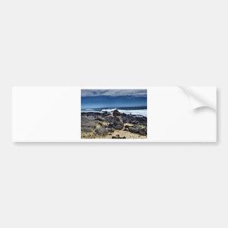 South Point.JPG Bumper Sticker