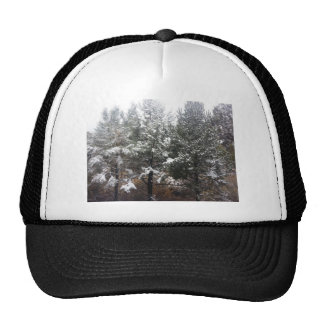 South Rim Grand Canyon National Park Pines Trucker Hat