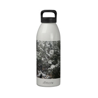 South Rim Grand Canyon National Park Pines Reusable Water Bottle