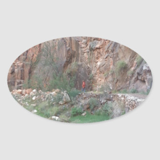 South Rim Grand Canyon Overlook Oval Sticker