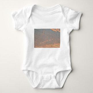 South Rim Grand Canyon Petroglyph T Shirt