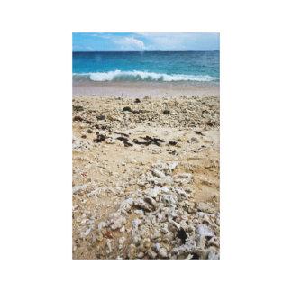 South Sea Island Beach, Fiji Canvas Print