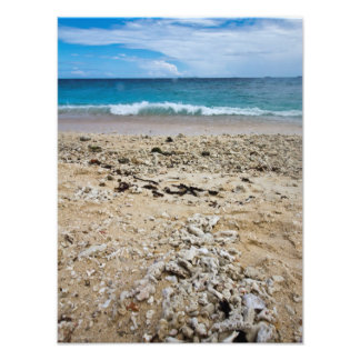 South sea island beach, Fiji Photo Print
