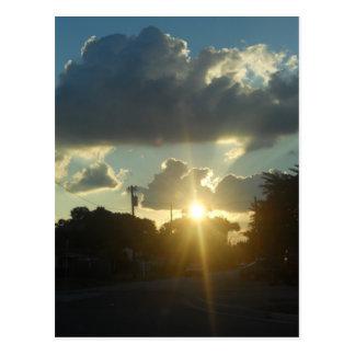 South Tampa sunset Postcard