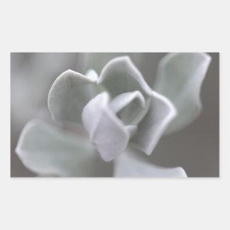"South Texas Rose ""Sage"" Photograph Rectangular Sticker"