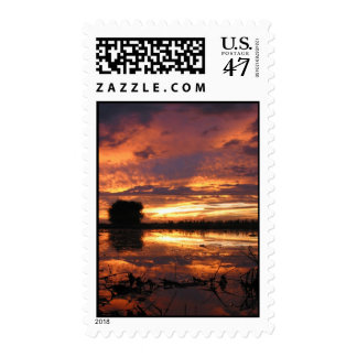 South Texas Sunset Postage